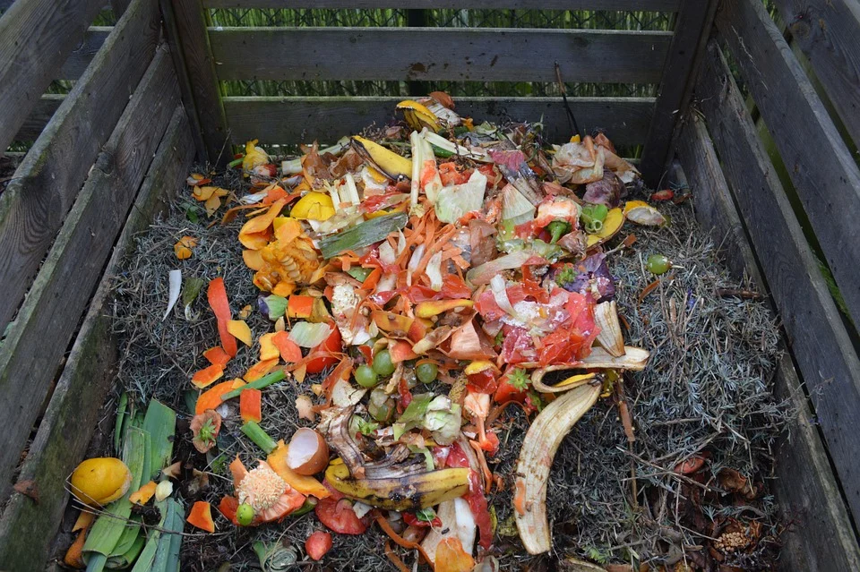 A compost bin filled with colorful, compostable organic waste